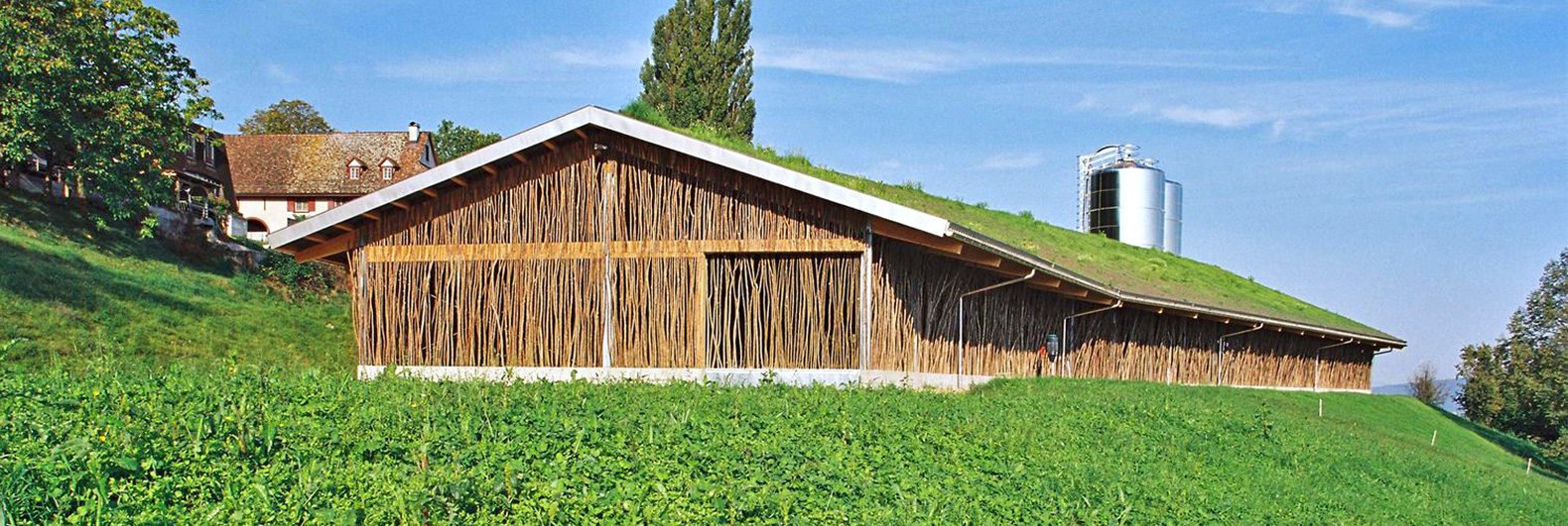 Beautiful Cow Barn In Basel Is Made Of Tree Branches Topped With A Grassy Roof