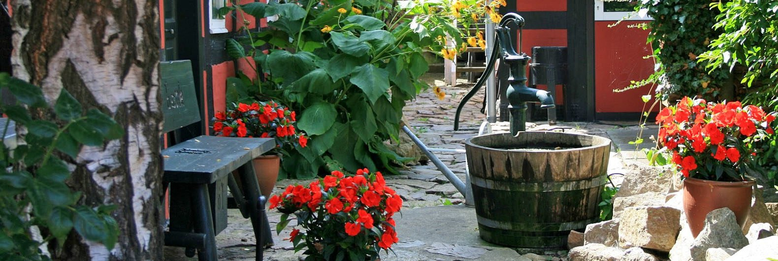 3 Ways To Capture Water For Your Backyard Garden (that Wonu0027t Break The Bank)