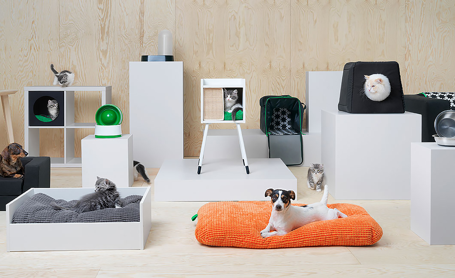 IKEA Is Offering Furniture For Pets And Its Adorable