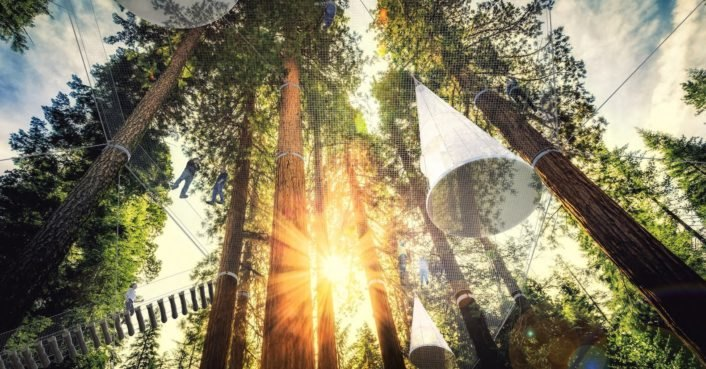 Sleep among the treetops in a nomadic hotel with minimal impact