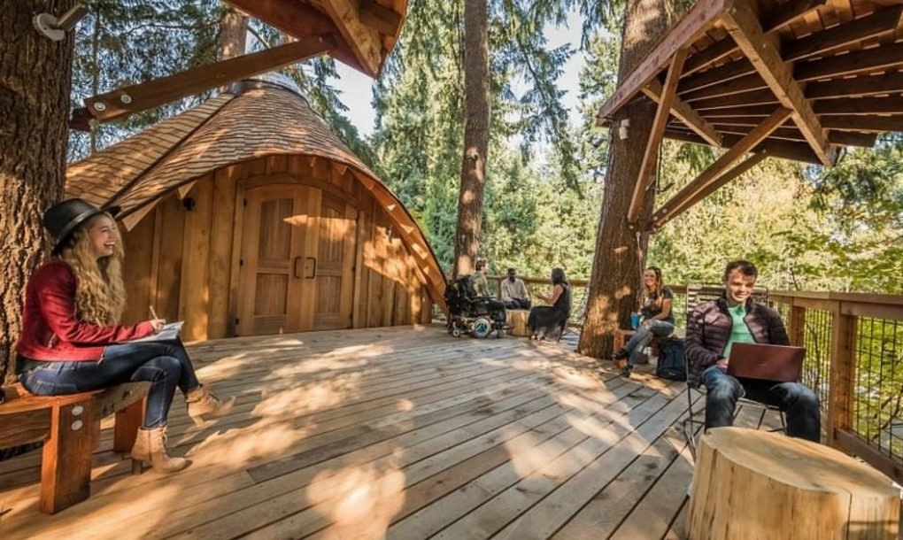 microsoft unveils amazing treehouse office where employees