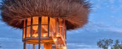 Bird Nest luxury suite, Bird Nest by Daniel Pouzet, Bird Nest Kenya, Bird Nest luxury hotel, NAY PALAD Bird Nest, Bird Nest Segera Retreat, Segera Retreat hotel, luxury hotel in Kenya, luxury hotel Laikipia