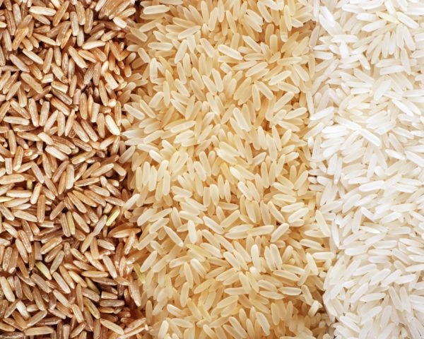rice, agriculture, saltwater farming, China