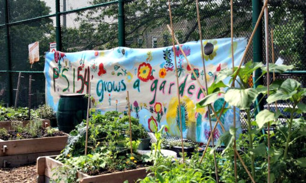 More than 50% of New York City\'s public schools now have gardens ...