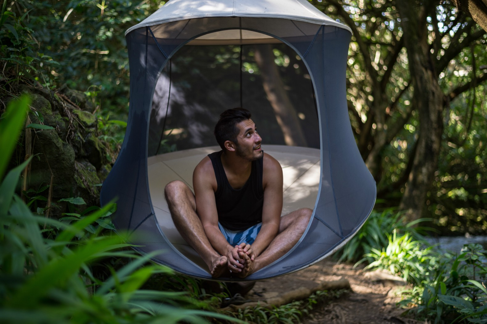 The Treepod Is A Serene Retreat That Swings From The