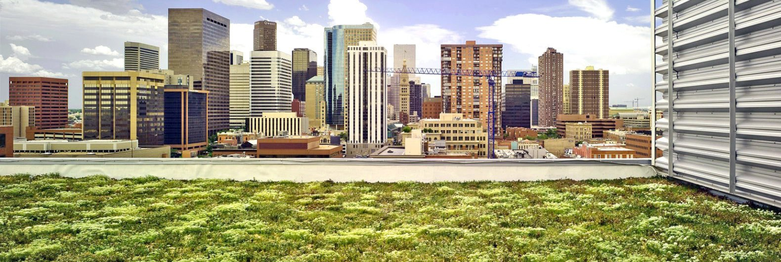 Denver To Vote On Green Roof Mandate For New Large