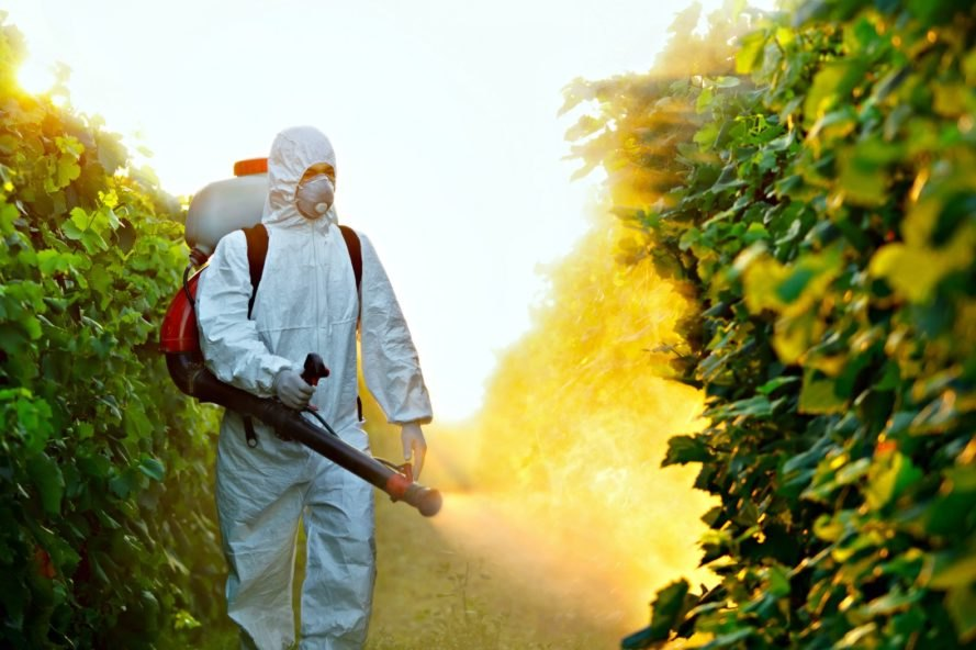 Pesticides in produce linked with reduced fertility in women