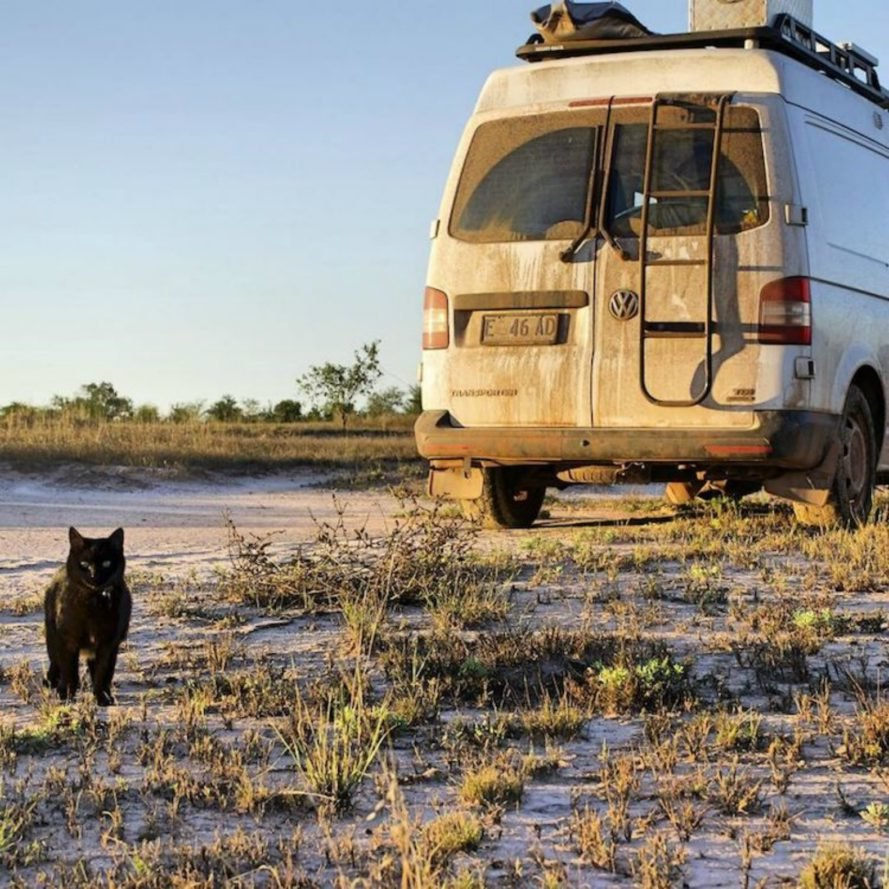 Australia, camper van, off-grid living, traveling, news, inspiration, Rich East, Van Cat Meow