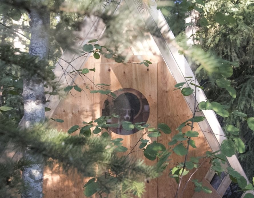 Birdhut by Studio North, Birdhut architecture, birdhouse architecture, human-sized birdhouse, birdhouse-inspired treehouse, British Columbia treehouse, treehouse made from reclaimed materials