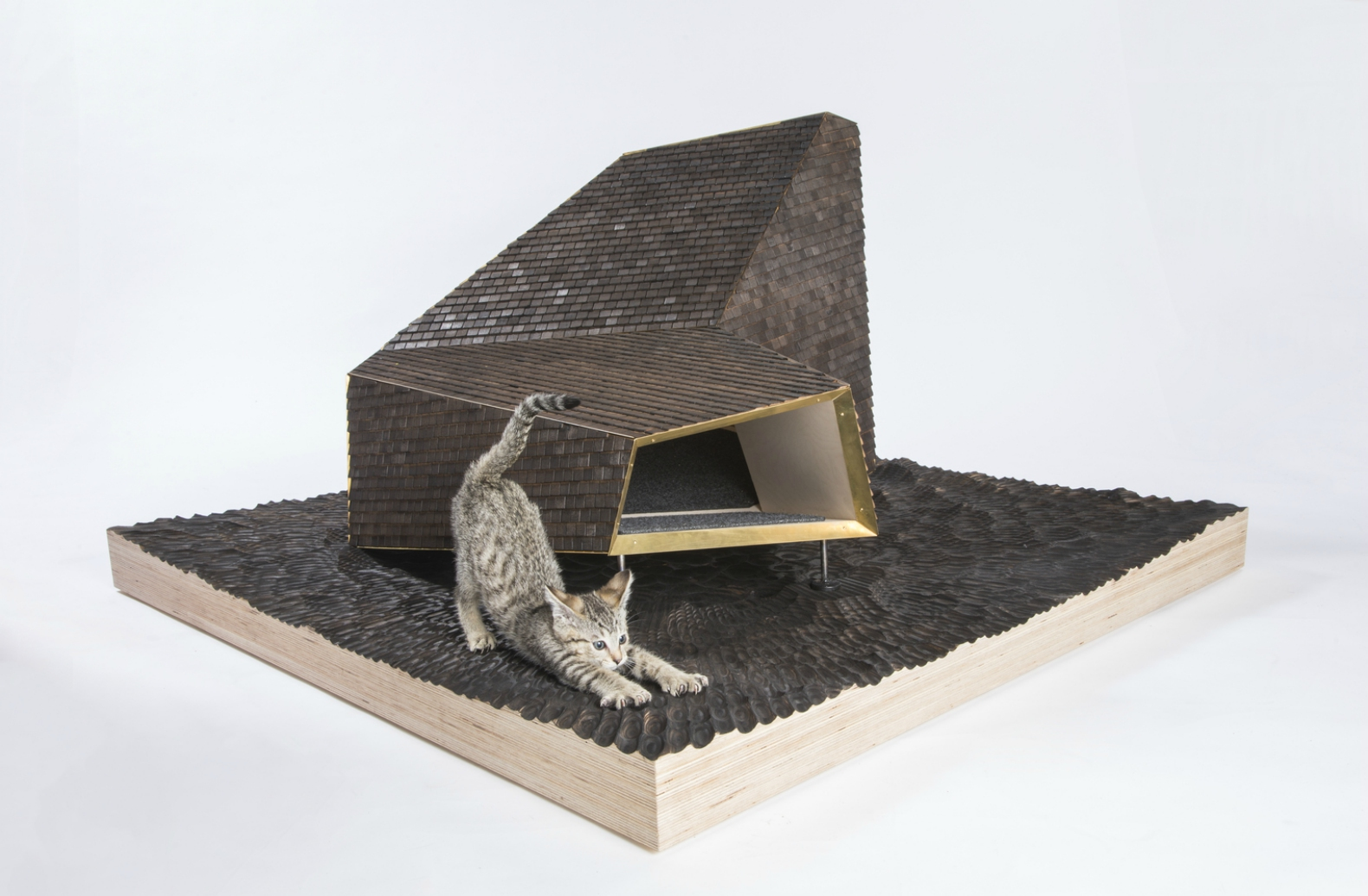 Architects Design Incredible Cat Shelters To Raise Money