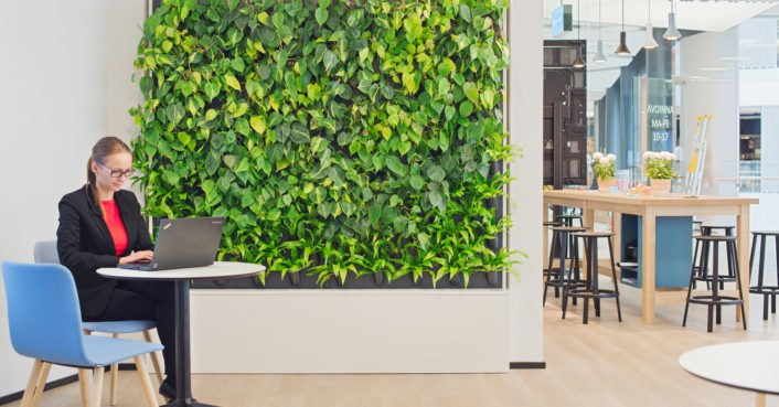 Charmant Naava Green Wall Office « Inhabitat U2013 Green Design, Innovation,  Architecture, Green Building