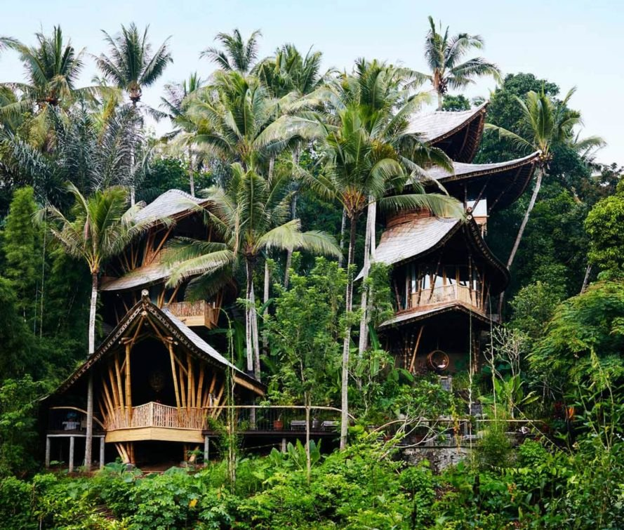 Stunning Multi Level Bamboo Home Stands Deep In The