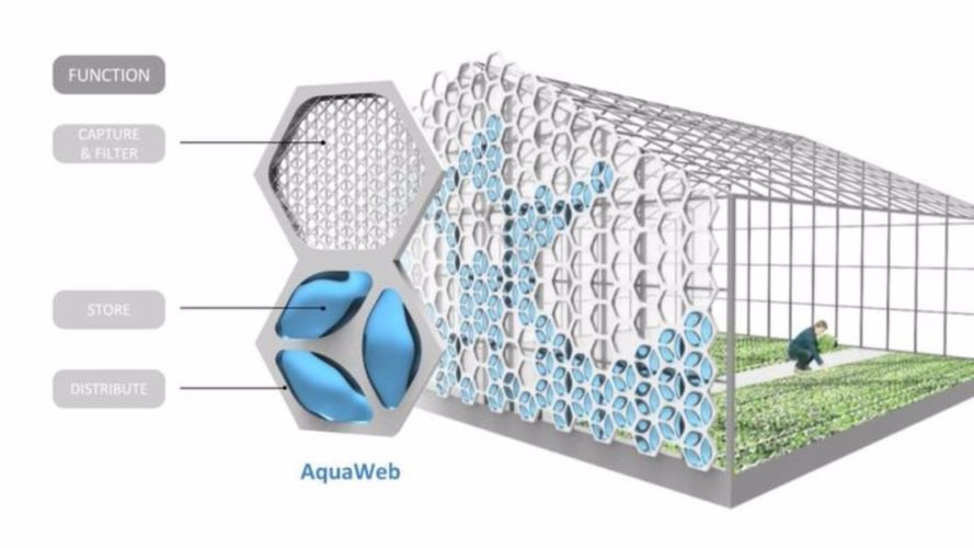 biomimicry, AquaWeb, urban farming, water capture