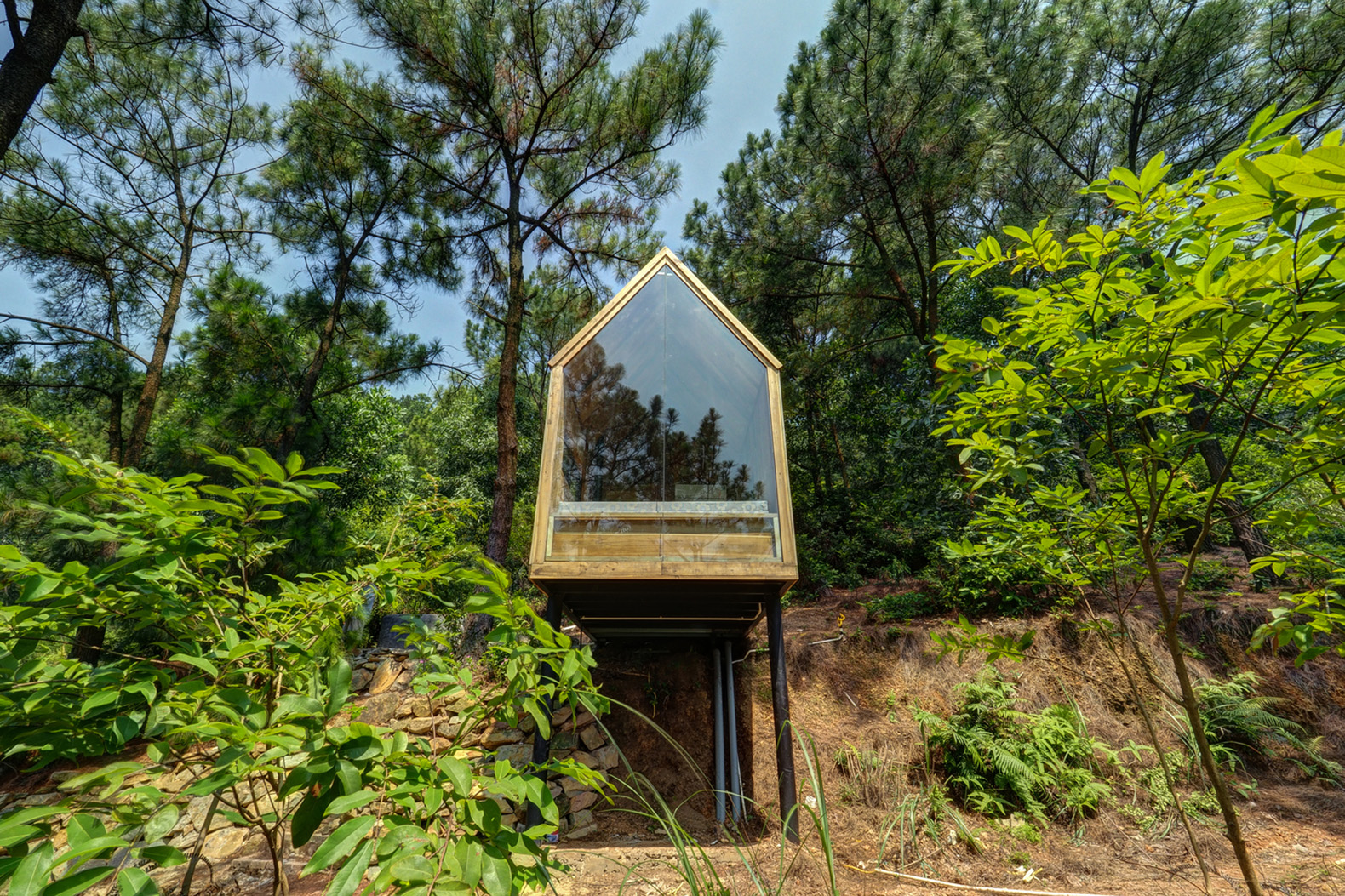 This low-cost forest house on stilts is a minimalist dream ...