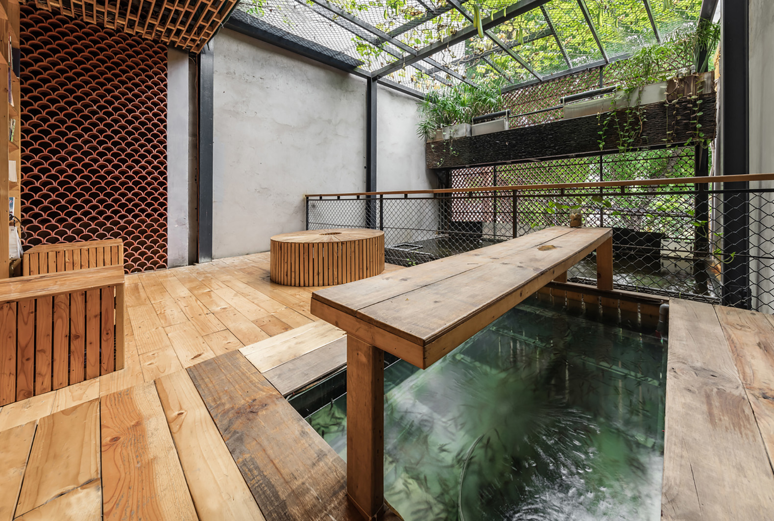 Hanoi S Koi Cafe Has A Thriving Ecosystem Complete With An