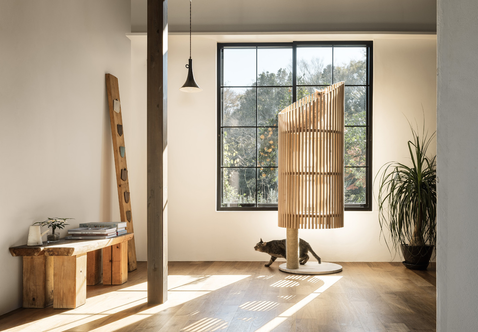 Beautiful Japanese Cat Tree For Design Conscious Pet Owners Costs 1 Million  Yen