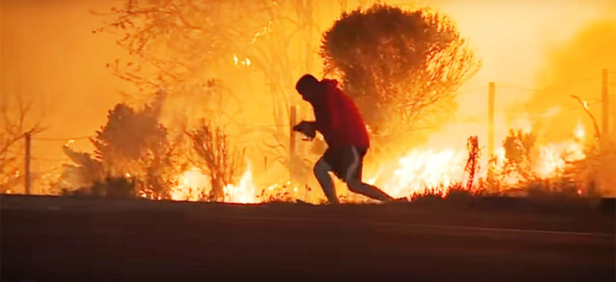 Thomas Fire, Southern California, fire, wildfire, flames, blaze, rabbit