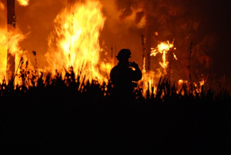 wildfire Florida, wildfire Southeast, wildfire fire fighter, wildfire night, wildfire South