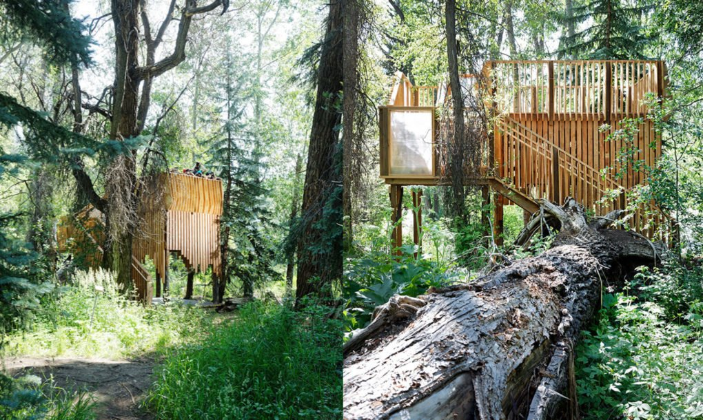 Aces Treehouse In Colorado Is Perfect For Wildlife