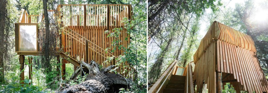 Aces Treehouse In Colorado Is Perfect For Wildlife Observation