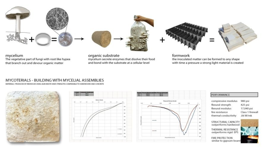 Mycoterials, mycoterials infographic, Biocycler, redhouse studio, recycled materials, recycled buildings, recycled building materials, biomaterials, fungus biomaterials