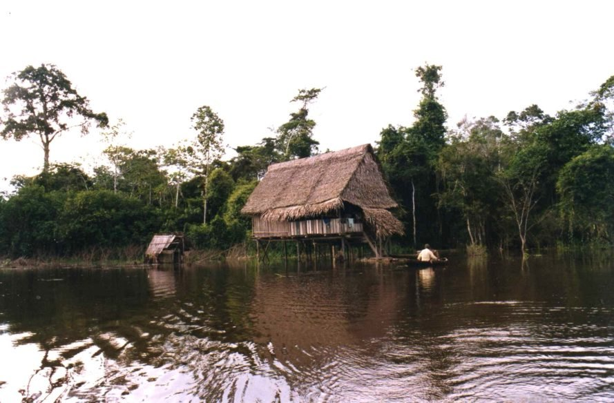 Amazon River, Amazon Rainforest, Amazon home, Amazon house