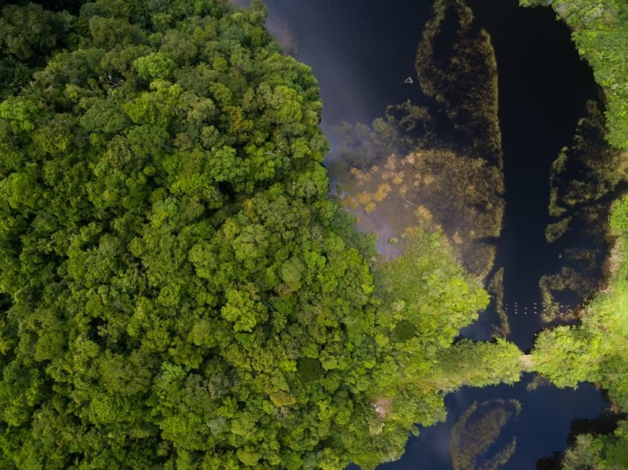 Amazon River, Amazon Rainforest, Amazon Peru, Amazon River aerial