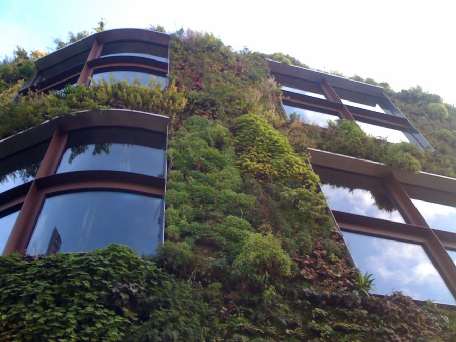 green wall, living wall, green wall Paris, sustainable building, green building