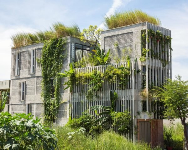 Ho Khue Architects, The Modern Village Office, green office, green office design, green office vietnam, office design, sustainable design, vietnam architecture, greenery in offices, vegetation in offices, office vegetation, green buildings, rooftop gardens,
