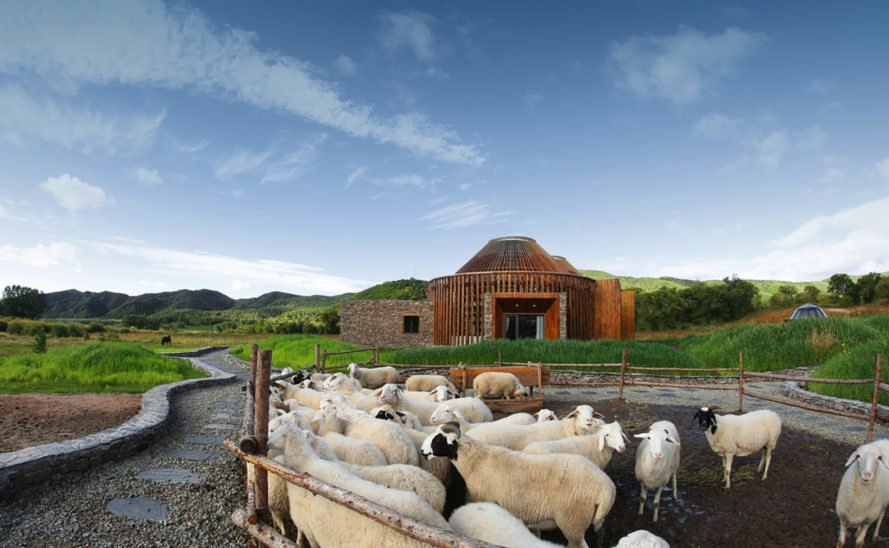 Mulan Weichang Visitors Center, yurts, China, Mongolia, HDD Architecture, visitor center, green architecture, wooden beams, locally sourced materials, natural light, library, low-e glass