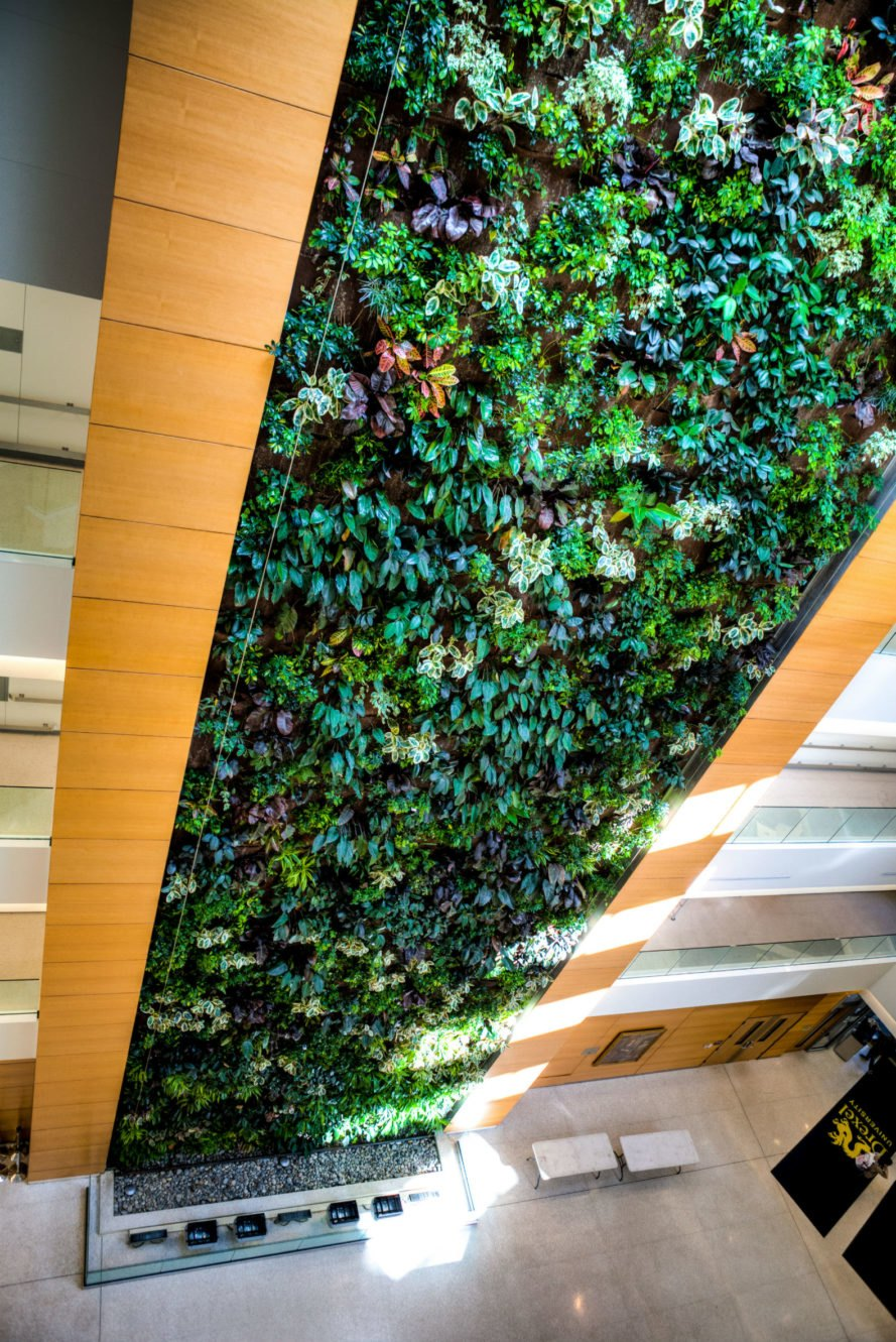 living wall, Drexel University living wall, green building, sustainable building