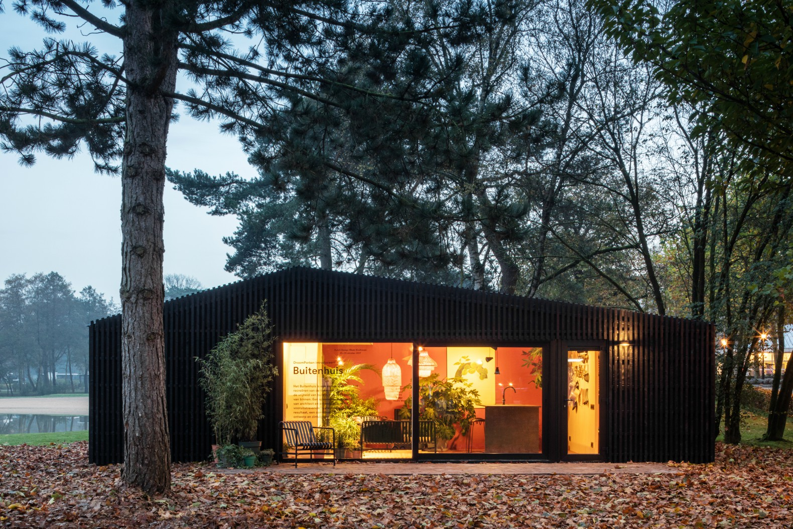 The Buitenhuis is a tiny house you can rent in the woods of the Netherlands