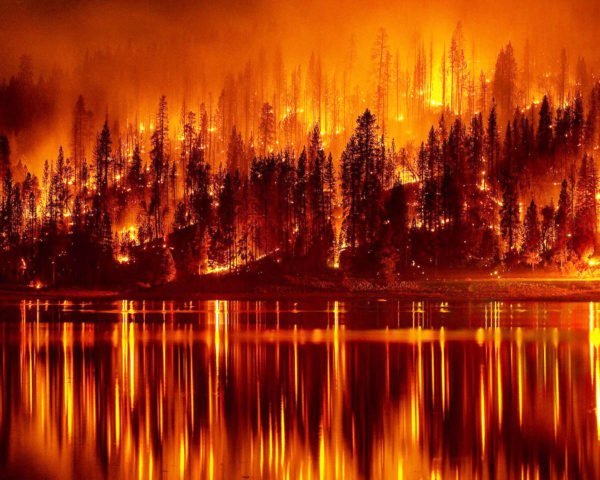 California, wildfire, fire, forest fire, trees, burning, blaze, lake