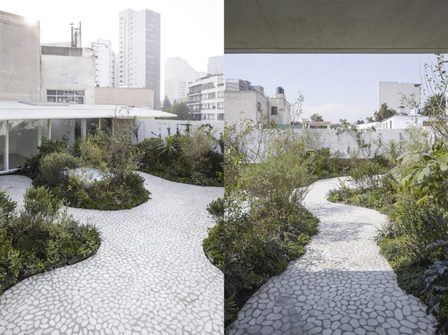 Case Verne by Zeller & Moye, native rooftop garden in Mexico City, Casa Verne Mexico City, renovated Art Deco townhouse, Mexico City townhouse renovation, cut marble pebble flooring, rooftop oasis in Mexico City