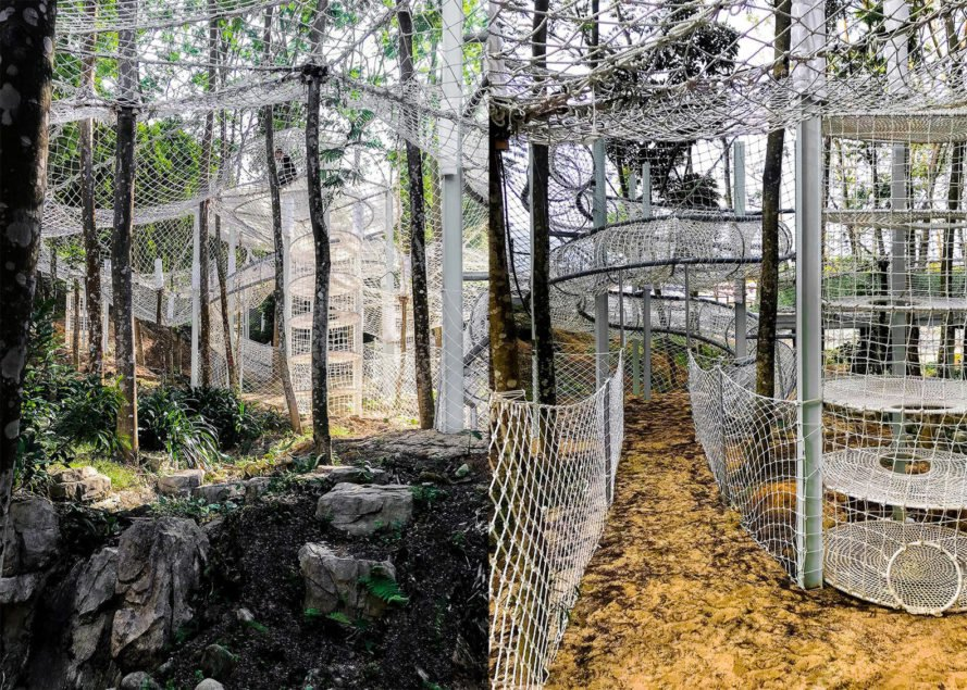 Climbing Park of Luofu Mountain by unarchitecte, Climbing Park of Luofu Mountain, suspended net play area in the forest, forest playground in the air, nature inspired playground in China, Climbing Park in Guangdong, climbing park for children