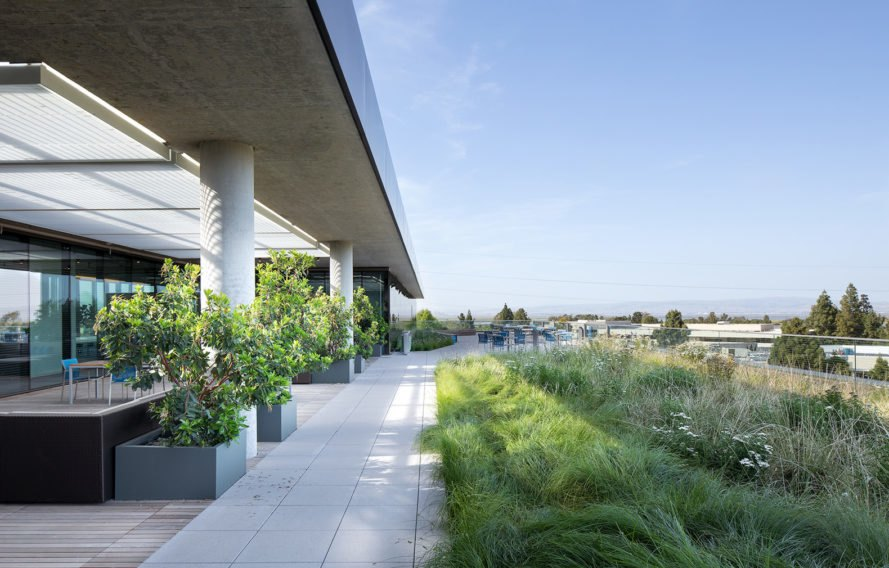 Marine Way Building, MWB, Intuit campus, Silicon Valley, Mountain View, green campuse, WRNS Studio, Clive Wilkinson Architects, LEED Platinum, office building, green roof, water consumption, green architecture, atrium