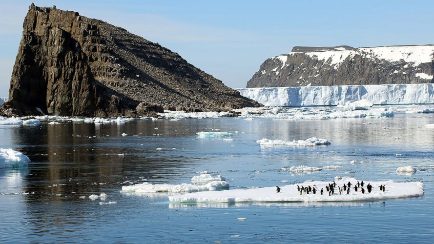 Previously Unknown Mega-Colony of Penguins Found on Antarctica's Danger Islands