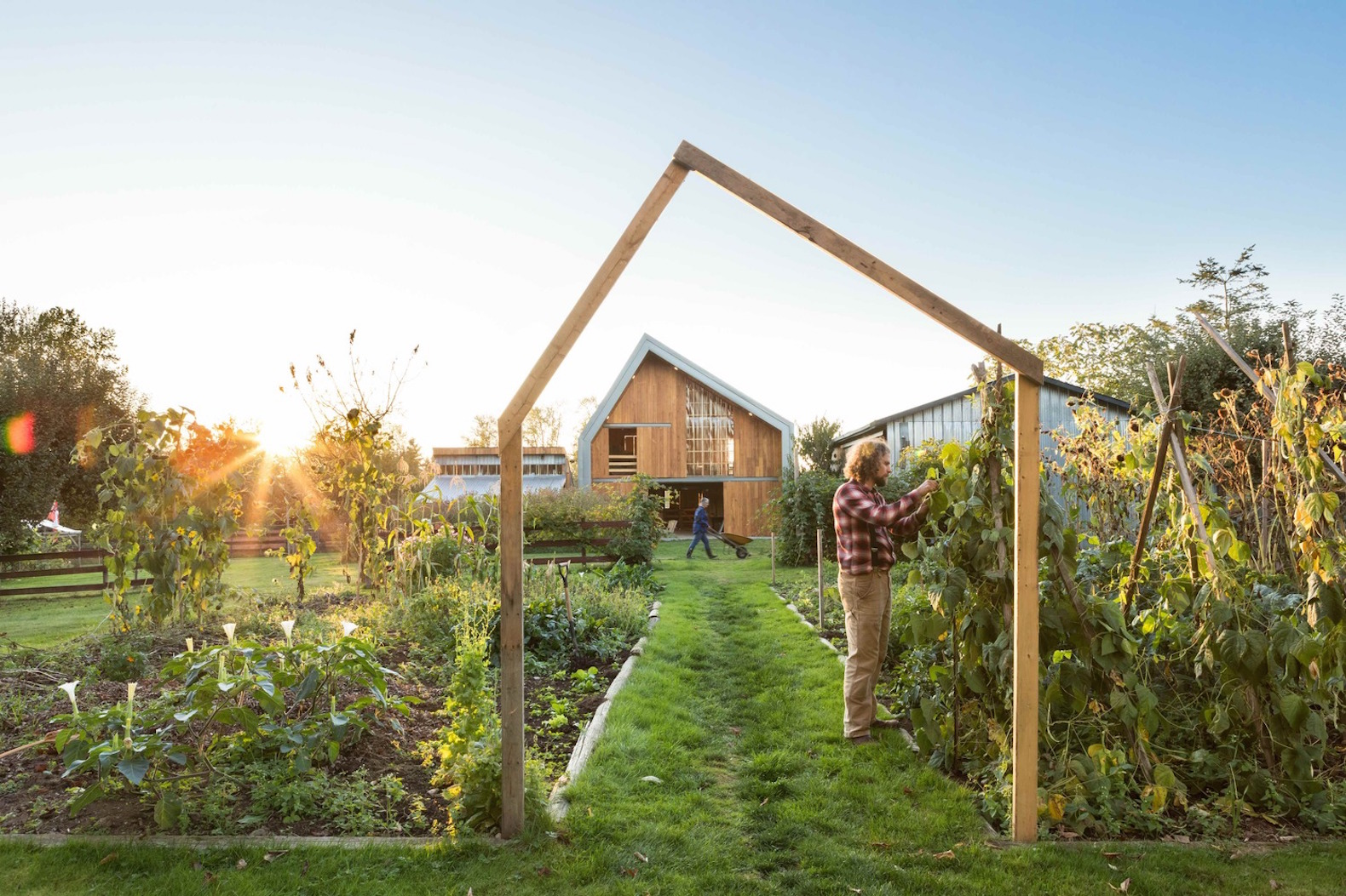 Traditional barn raising techniques bring a modern cost-effective farm to life