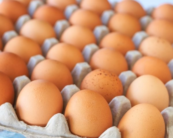 eggs, organic eggs, tray of eggs