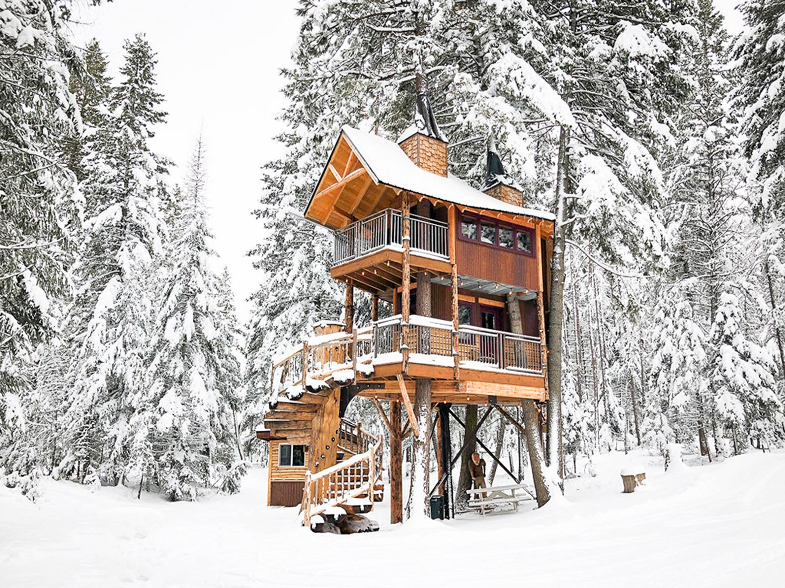 Four Living Trees Grow Through This Dreamy Treehouse Retreat In Montana