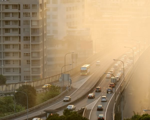 Cars drive on a highway, but the air is filled with smog.