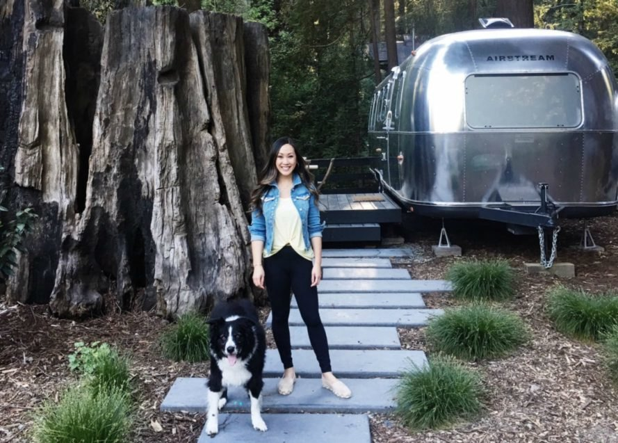 Walking a dog near a redwood tree at AutoCamp Russian River location.