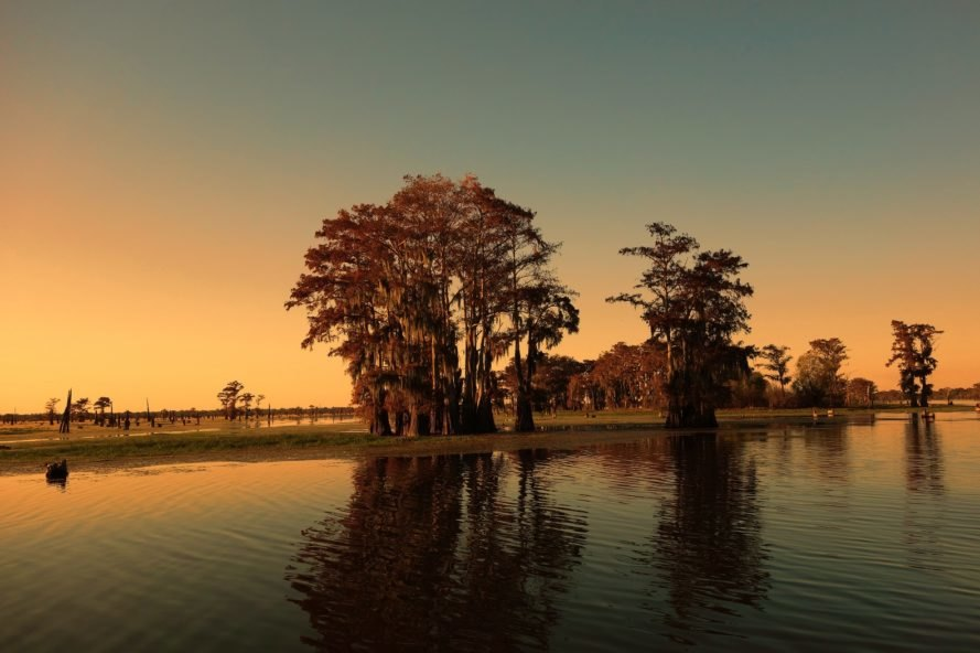 bayou, marsh, Louisiana