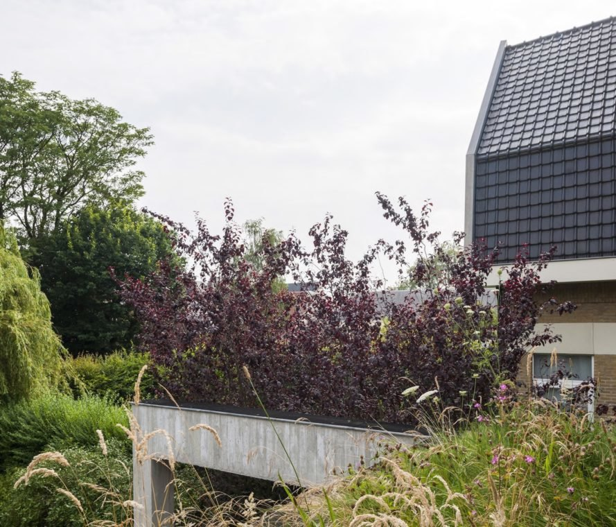 MILU by Qatarchitecten, green roof concrete extension, MILU house in Ghent, Ghent renovation and extension, board formed concrete extension, board formed concrete structural walls, operable glass garden backyard doors,