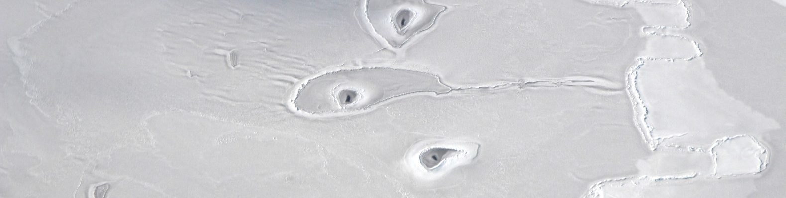 Mysterious holes in Arctic sea ice; image taken by Operation IceBridge