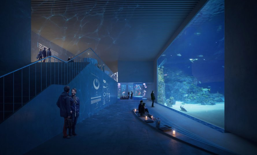 Shark tank Poseidon's Realm by 3XN and GERNER GERNER PLUS