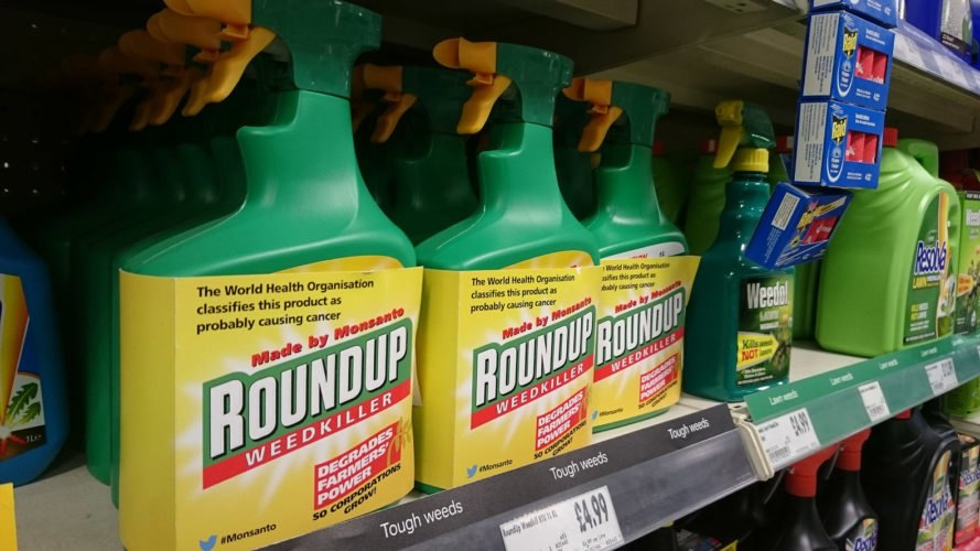 Bottles of Roundup weedkiller on a store shelf