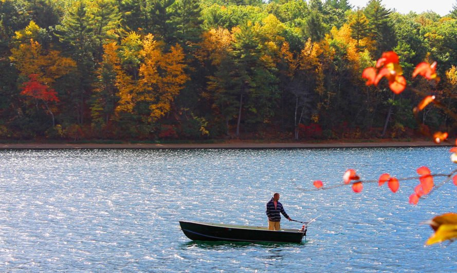 A man is in a small boat on Walden Pond. Behind him, trees with colorful leaves line the pond.