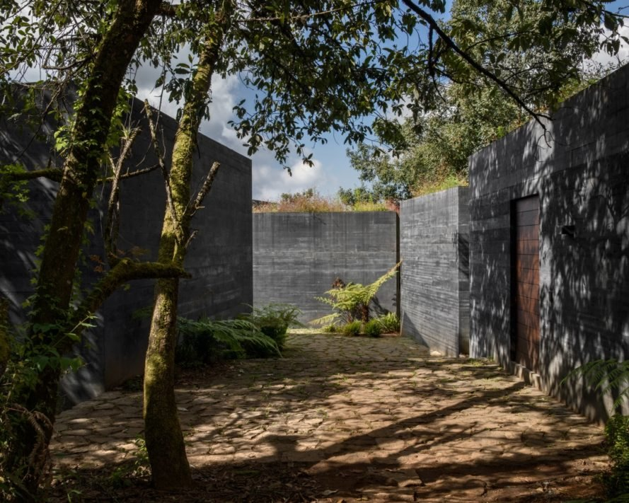 existing trees preserved Casa Bruma by Fernanda Canales and Claudia Rodriguez