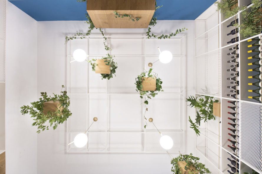 hanging plants Cento61 by Studio DiDeA